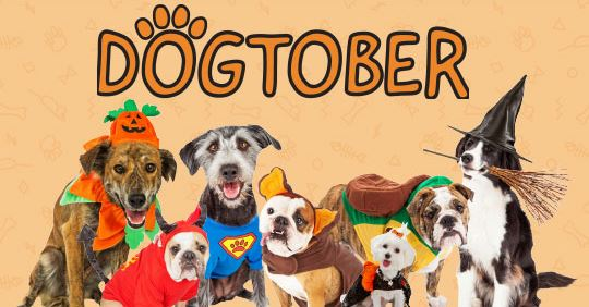 Dogtober Promotion for National Adopt a Dog Month
