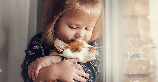 a small girl hugging her orange and white cat