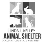 Calvert County, MD Animal Shelter